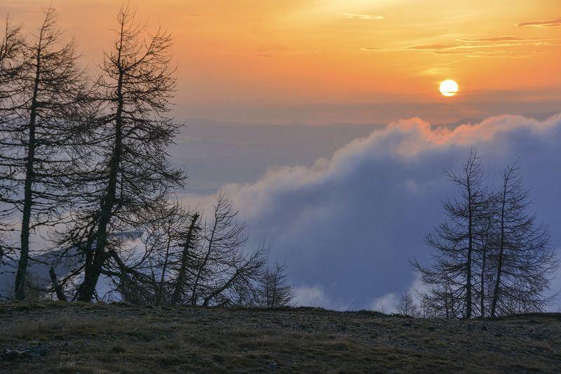 Горы, утро, Альпы, Фотограф Дмитрий Колисниченко Утро в Альпахphoto preview