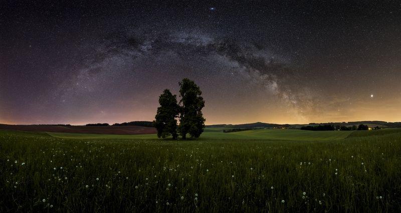 panorama, milkyway, stars, tree, blue, galaxy, landscape, night Stargatephoto preview