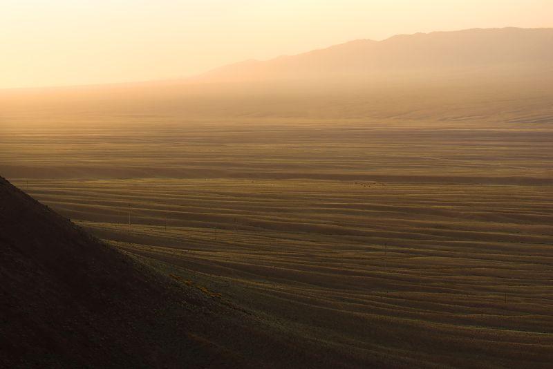 утро, восход солнца, линии, горный пейзаж, холмы, бартогай, казахстан, путешествие \'Это не горы, это волны\'photo preview