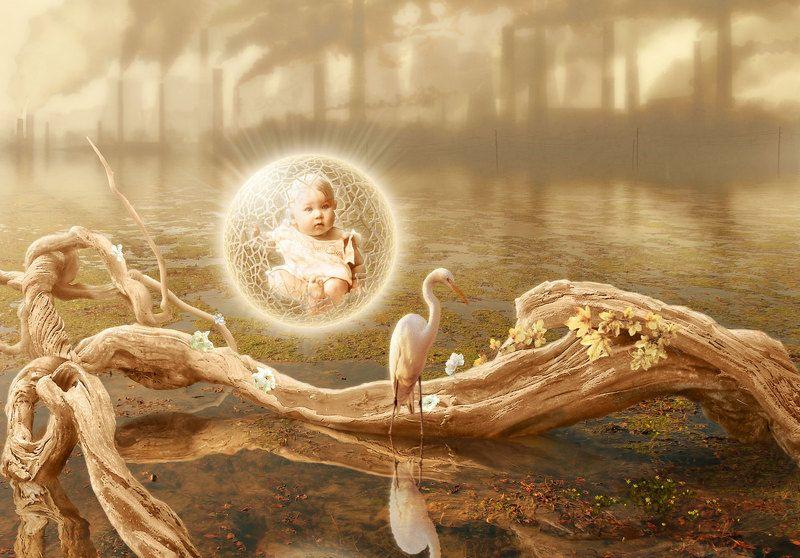человек среда обитания Человек родилсяphoto preview