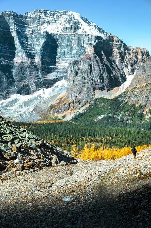 канада, банф, национальный парк, горы, альпинизм, приключения, путешествия, люди и пейзаж, лиственница. лес, отдаленная, райская долина, гора митра, пик, альпийский,canada, banff, national park, mountain, backpacking, adventure, travel, people and landsca To the Paradise Valleyphoto preview