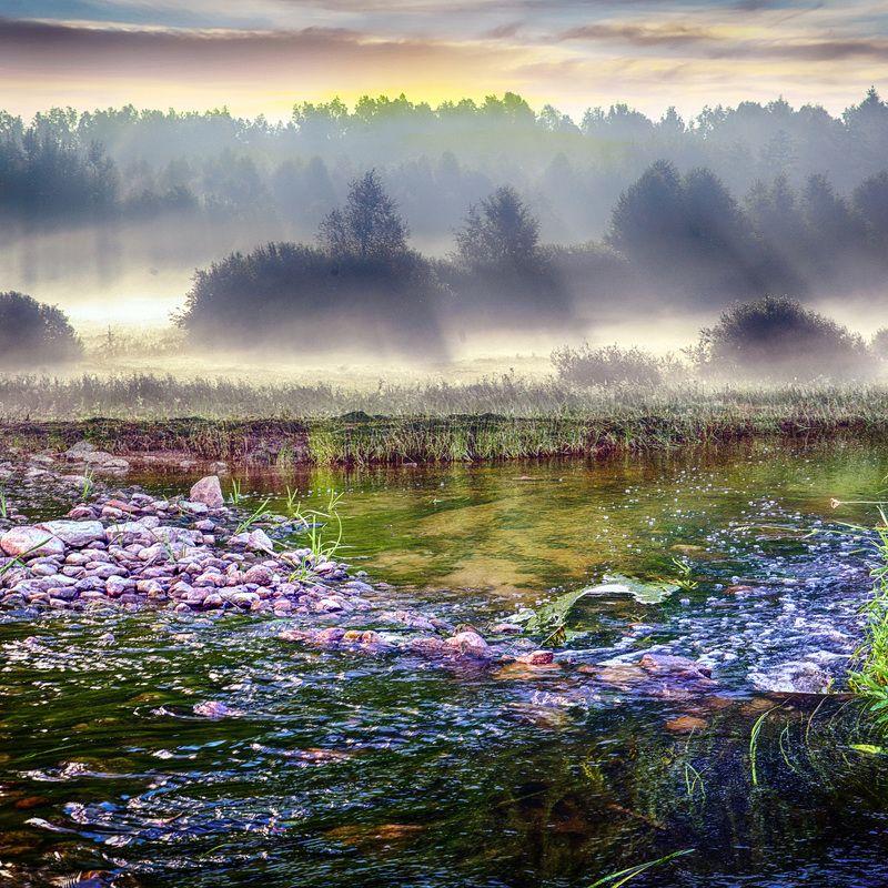 утро, туман, река, природа Раннее утроphoto preview