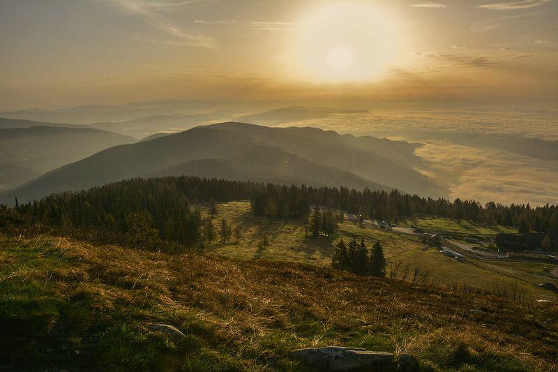 альпы, утро, солнце, тени, туман Развернуть крылья и шагнуть вперед...!photo preview