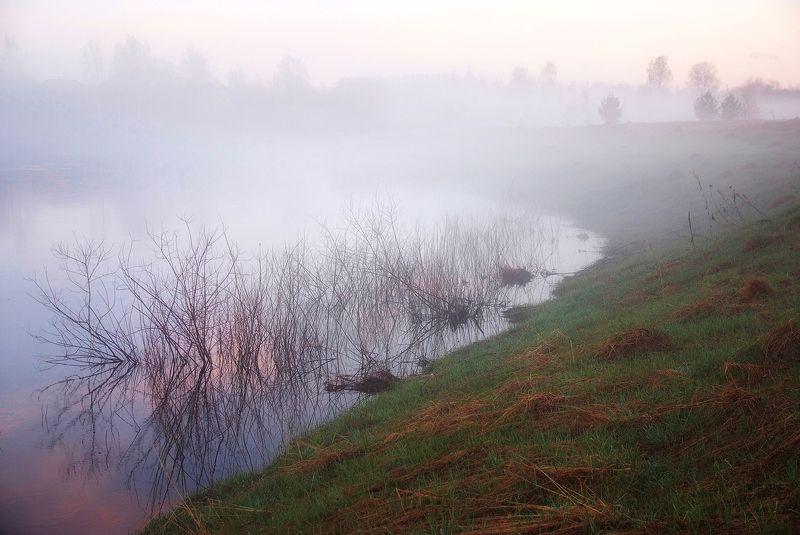 весна, туман, река, разлив Туман на Березайкеphoto preview