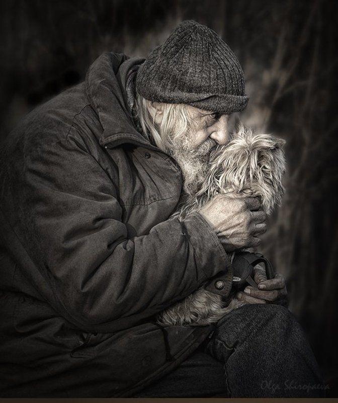 один, собака, семья, старость Единственная привязанность.photo preview