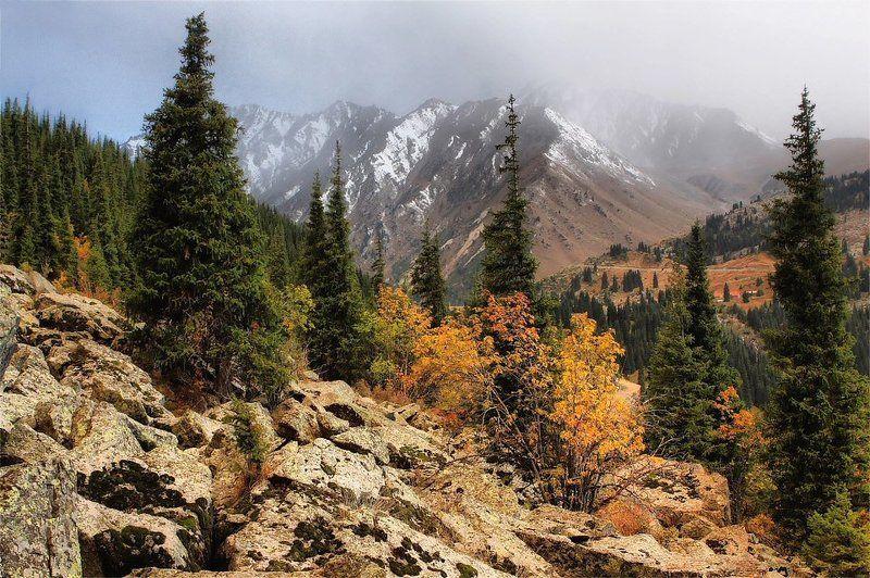 осень,горы в Заилийском алатауphoto preview