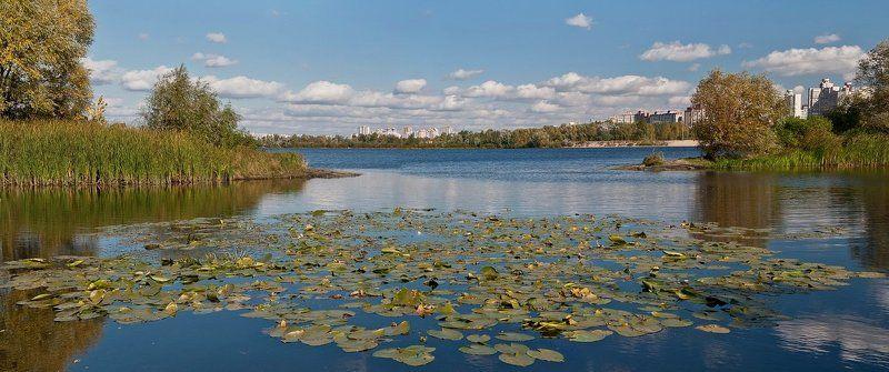 киев, десенка, река, облака, город, кувшинки ***photo preview