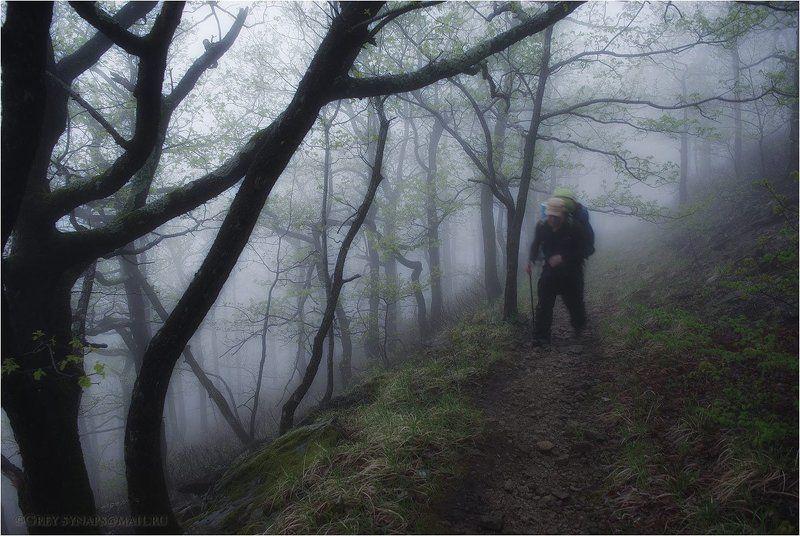 Идущий в туманеphoto preview
