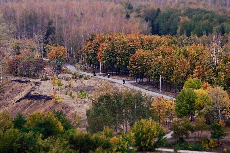Все тот же парк (осень)photo preview