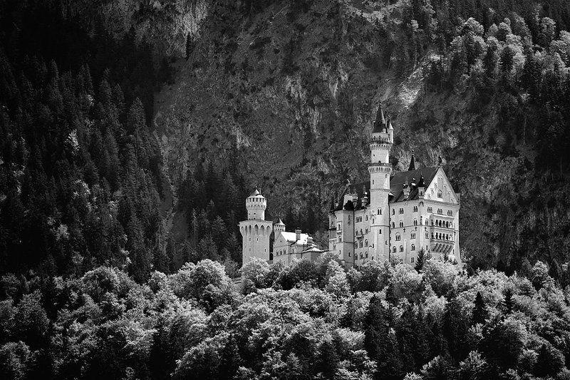 германия, нойшванштайн белый лебедьphoto preview
