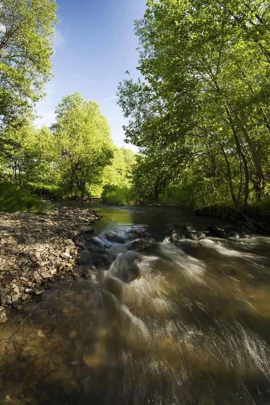 Шумная река photo preview