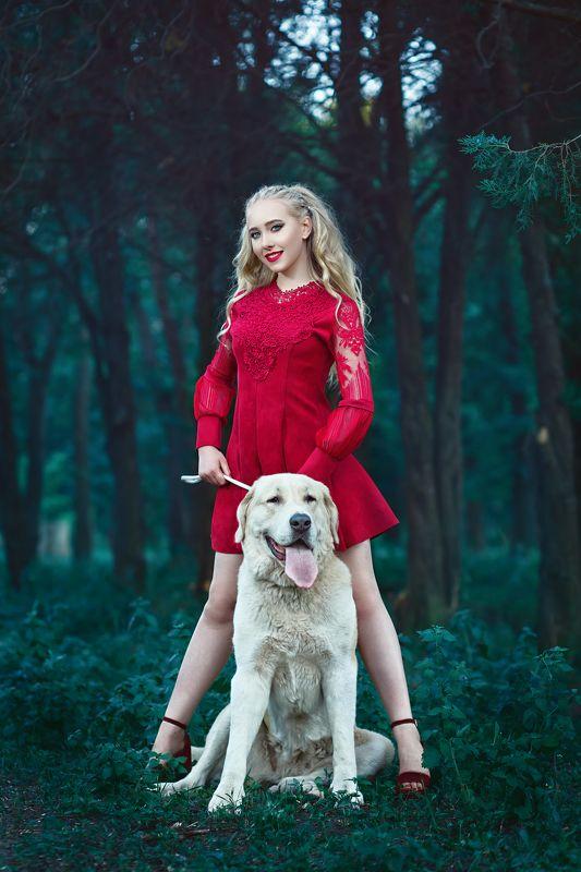 мода, стиль, гламур, портрет, красный, собака, огромный пес, блондинка, красивый, зеленый, красный, лес, лето, природа Девушка с собачкой)photo preview