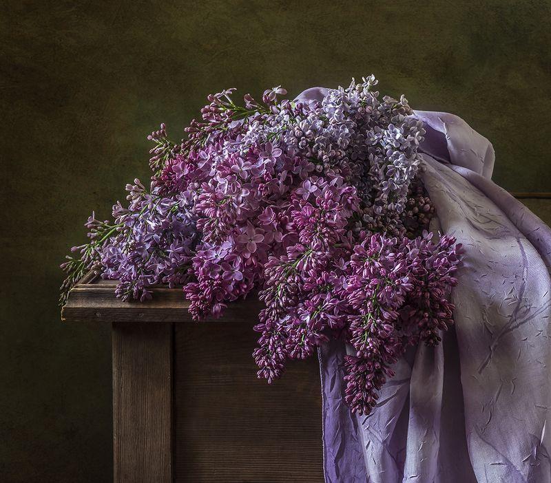 натюрморт, цветы, still life Сиреньphoto preview