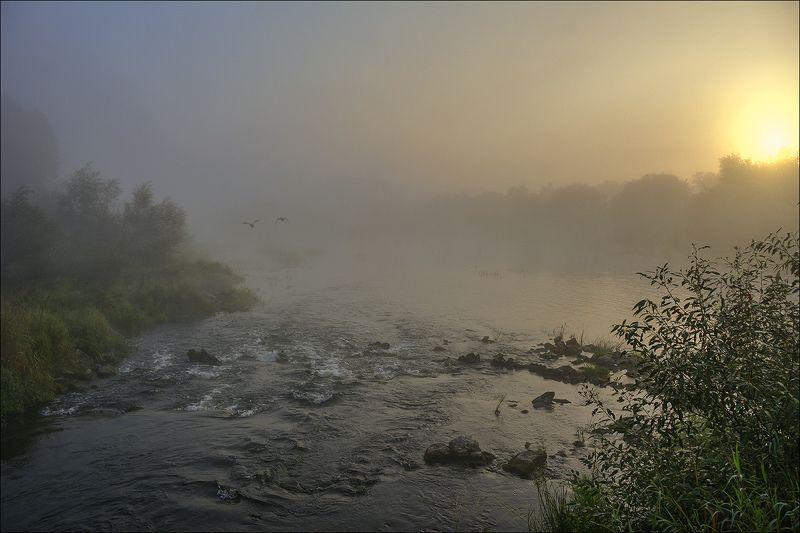 река, рассвет, туман, солнце р. Случ просыпается, постепенно скидывая синтепоновое одеяло тумана...photo preview