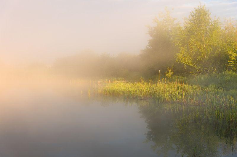 Светлое утро.photo preview