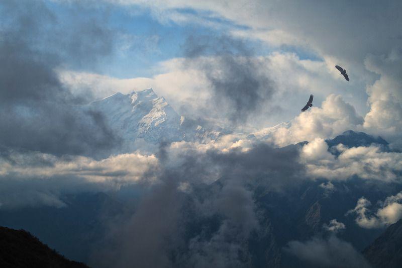 непал, гималаи, аннапурна, дхаулагири Назидание. Tukuche Peak. 6920 м. Annapurna regionphoto preview