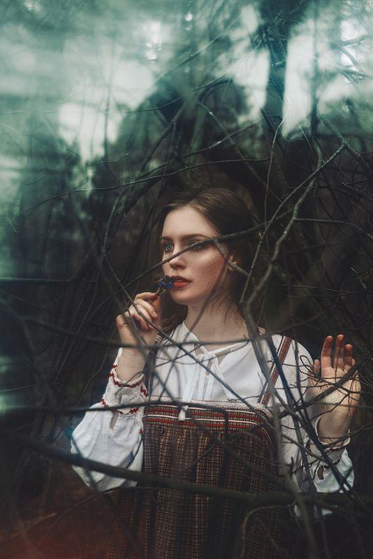 сказка девушка фольклор картина живопись русь медуница лес хтонь Алёнушкаphoto preview