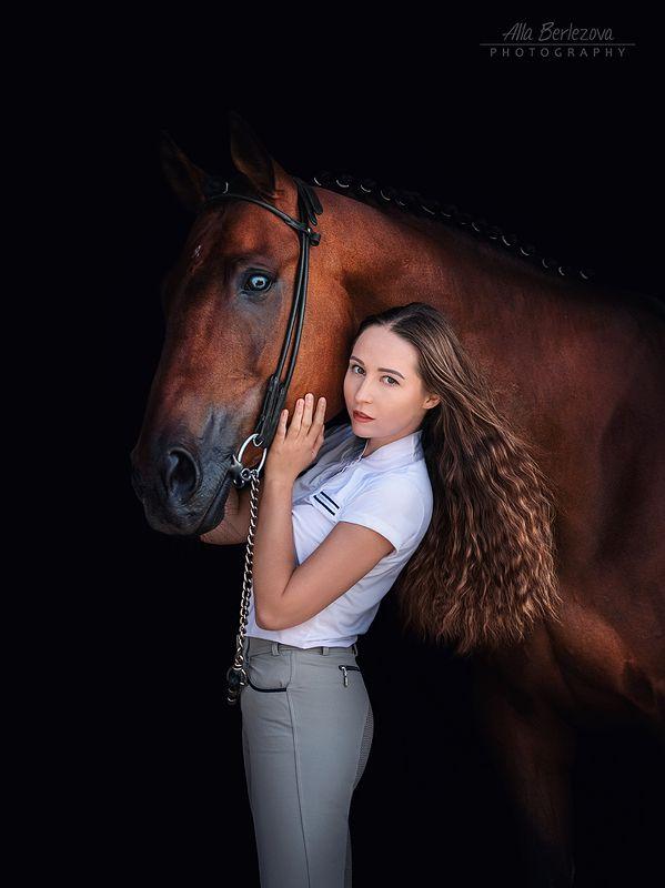 лошадь, лошади, свет, horse, horses, light, девушка, girl, black, background on blackphoto preview