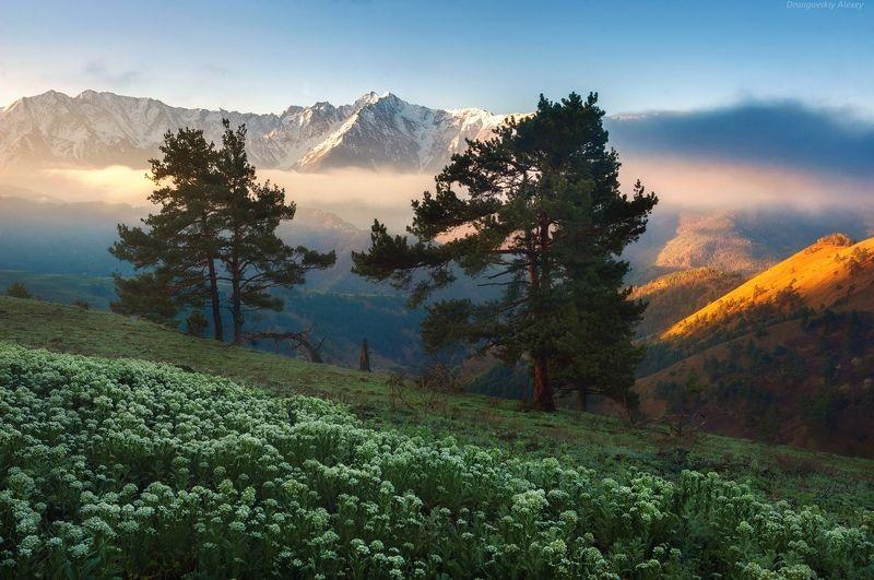 Утро в горахphoto preview