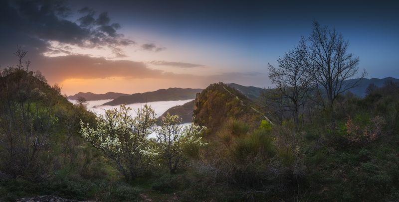 панорама, италия, кастельмедзано, пейзаж, утро, рассвет Раннее утро в Кастельмедзаноphoto preview