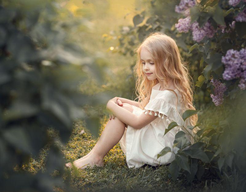 волшебный свет, сирень, lilac, blossom, sunset, white dress, sunlight, beautiful light Shelteredphoto preview