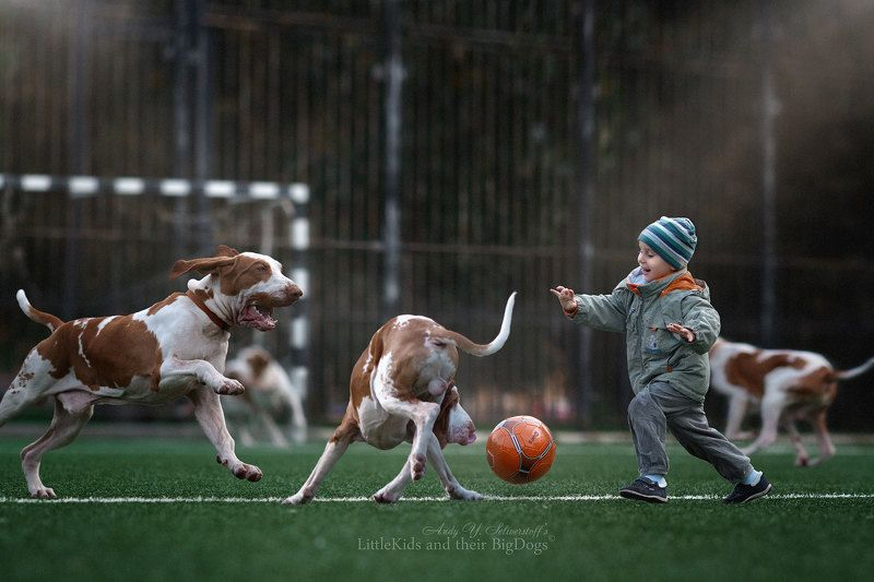 Football - the Best Game in the Worldphoto preview