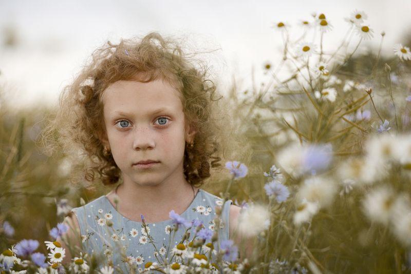 девочка глаза  взгляд лето зелень задумчивость детство волосы васильки поле ромашки \