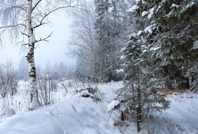 Вспоминая зиму.photo preview