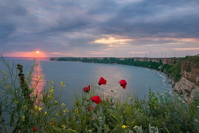 #sunset #kavarna #bulgaria #cape kaliakra #spring #travel #journey #poppy Poppy sunsetsphoto preview