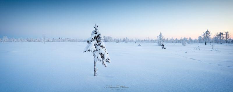 зима, панорама Панорама зимняя, полярнаяphoto preview