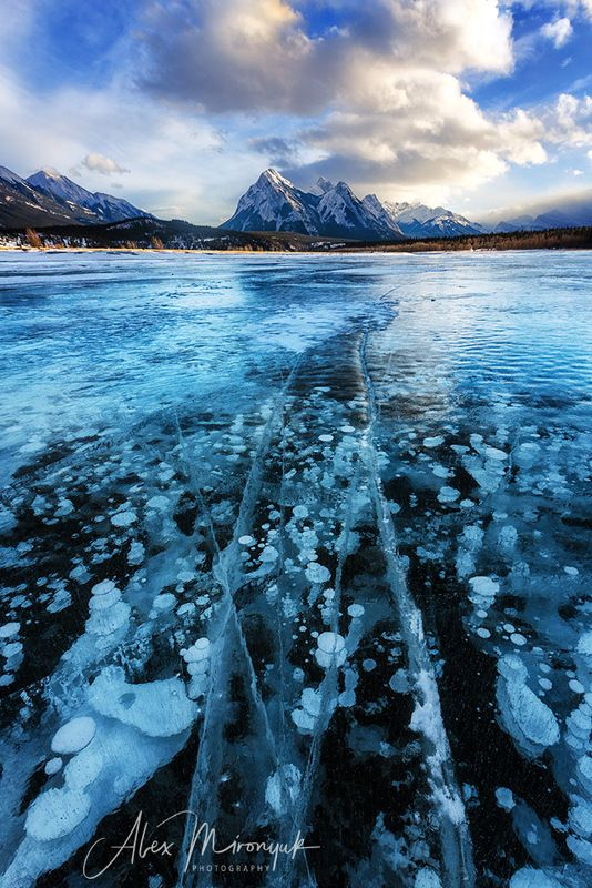 канада, альберта, метан, метанин, пузыри, лед, фото-тур, отражение, зима, снег, лед, горы, озеро, байкал, Зима в Альбертеphoto preview