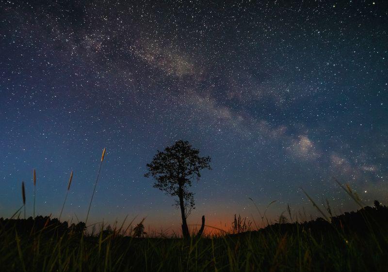 ночь,звезды,млечный путь Летняя ночь..photo preview