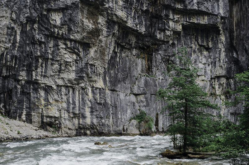 ущелье, стена, горы, скалы, река, дерево, течение, поток Горная рекаphoto preview