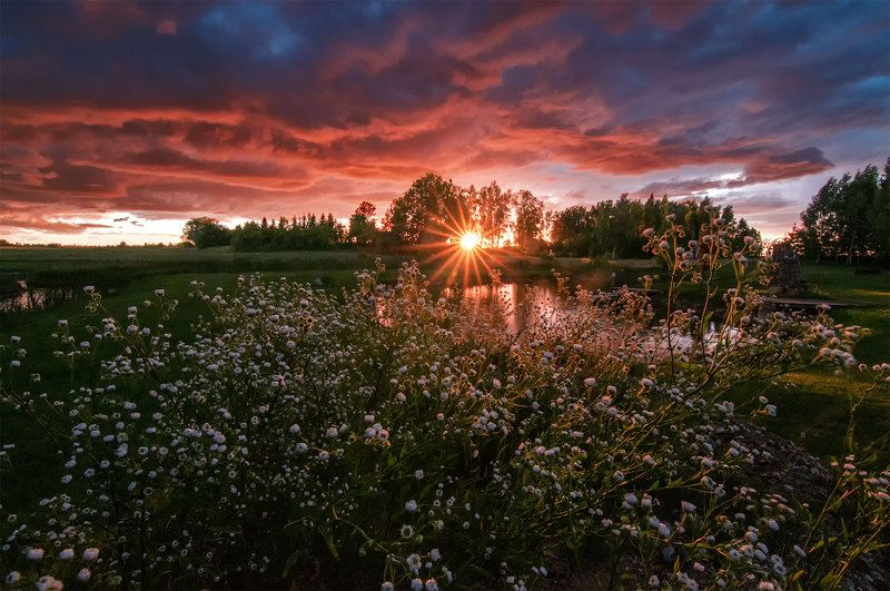 sunset, summer, flowers,clouds, colors Summer sunetphoto preview