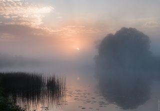 Туманный рассвет на Угре реке.