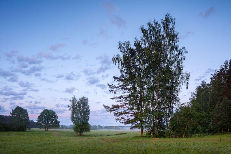 пейзаж Летнее утро, 04:05photo preview