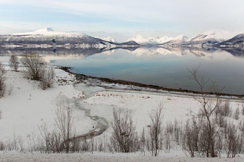 лофотены, норвегия , отражения в воде, ледяные кочки ,зимние лофотены,снежные горы, Лофотеныphoto preview
