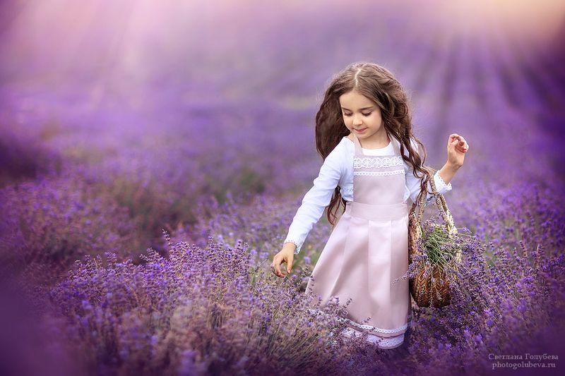 дети, лаванда, крым, детский фотограф, детская фотосессия Лавандовые мечтыphoto preview
