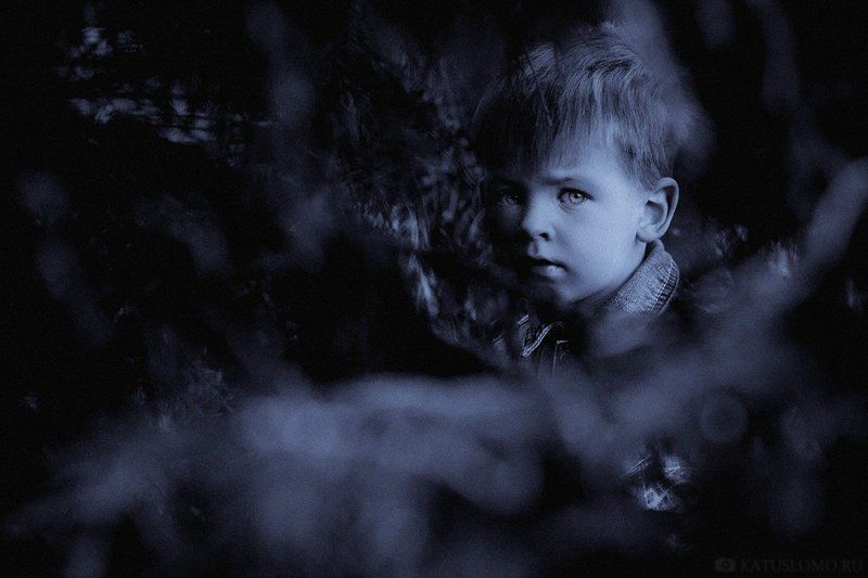темной ночью, в темном лесеphoto preview