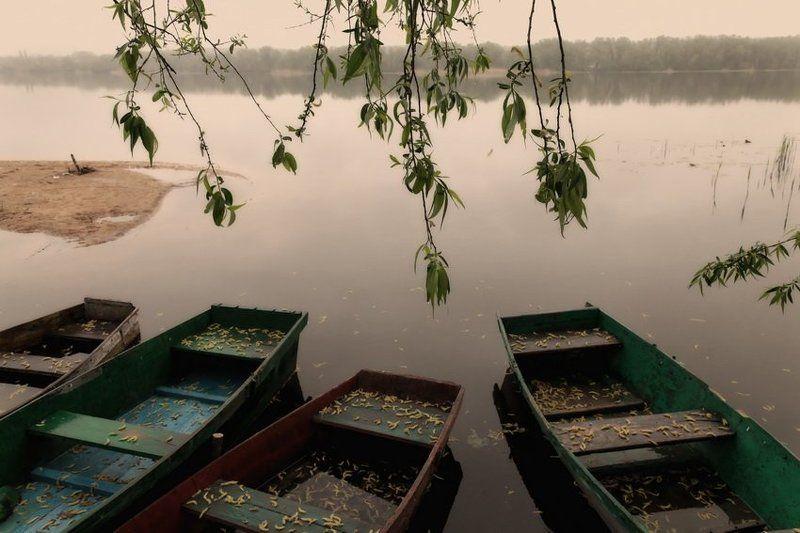 лодки ***photo preview