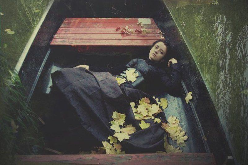black tulipphoto preview