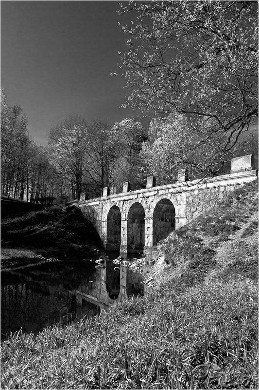 ораниенбаум,парк,петроффский,мост Мостикphoto preview