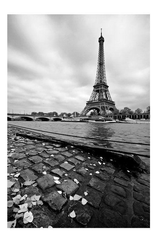 seine, river, city, autumn, eiffel, tower, paris La Princesse lointainephoto preview