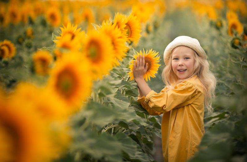 девочка, желтый цвет, подсолнухи, поле подсолнухов, девочка в шляпке В подсолнухахphoto preview