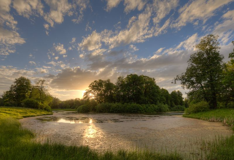 пруд, тина, павловск, санкт-петербург Затянуло бурой тиной, гладь старинного прудаphoto preview