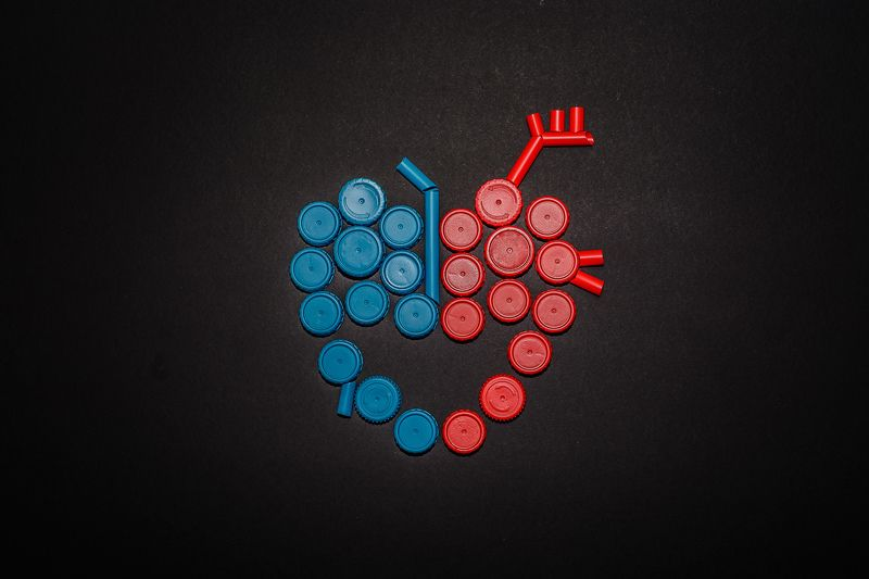 abstract, art, conceptual, recycled, artistic, organs Heartphoto preview