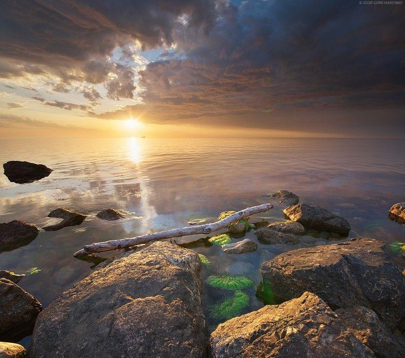 моер закат камни коряга крым Спокойствие photo preview