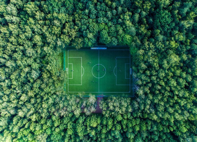 football, forest, nature Hidden footballphoto preview