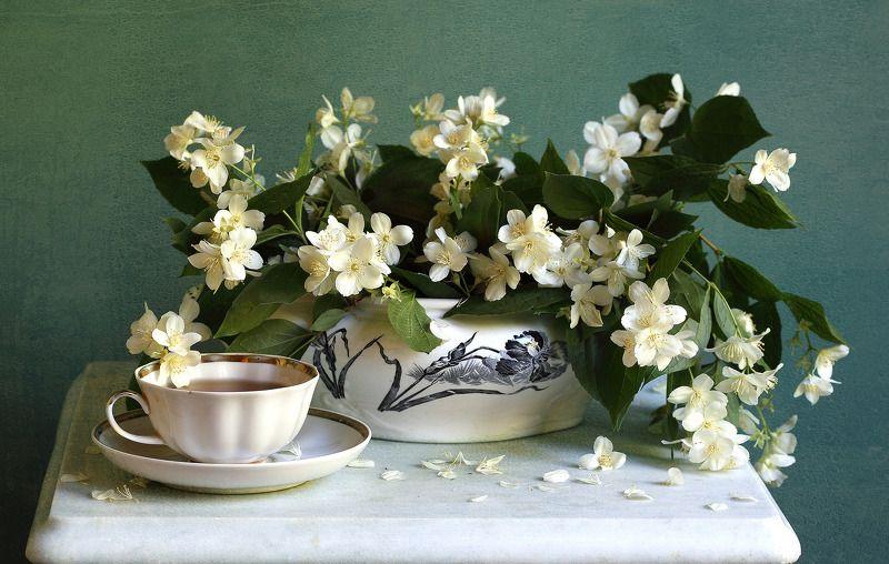 жасмин, чашка, старинный фарфор, мрамор Чай с жасминомphoto preview