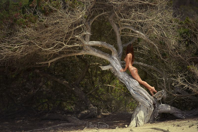 ballerina, dance, dancing, portrait, street, outdoor Дерево познания добра и злаphoto preview